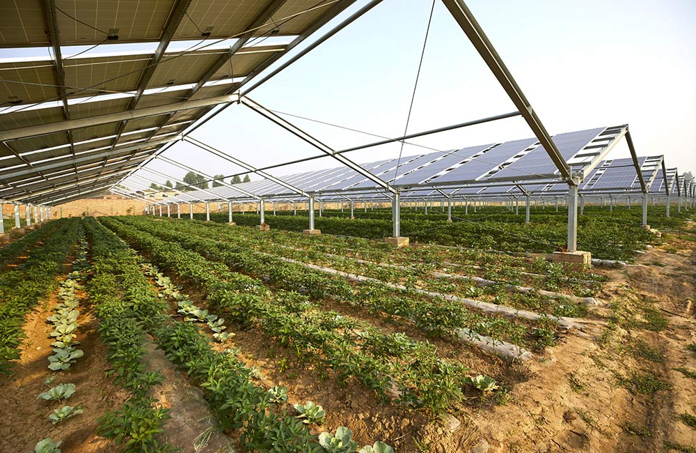 Überdachte Photovoltaik-Varianten spenden zudem Schatten