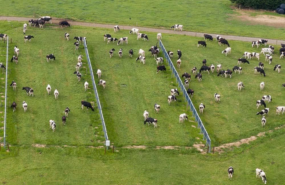 Nachhaltige Energie in der Landwirtschaft erzeugen
