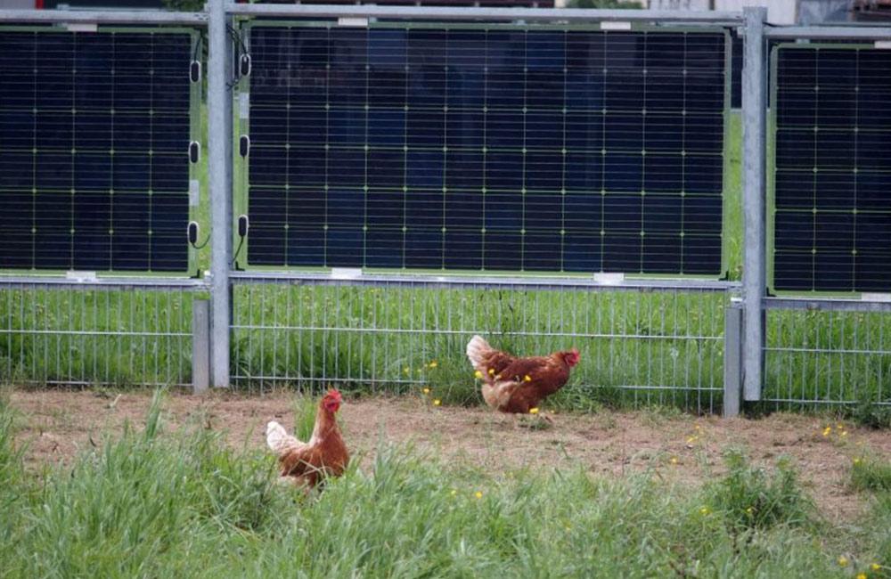 Photovoltaik-Anlage für landwirtschaftliche Flächen